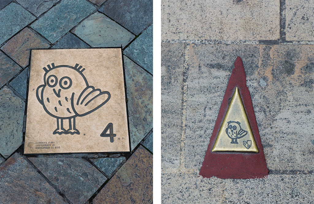 Parcours de la chouette Dijon