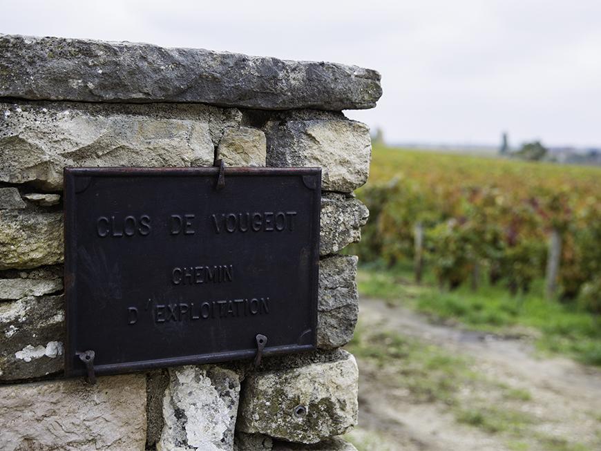 Clos de Vougeot Bourgogne