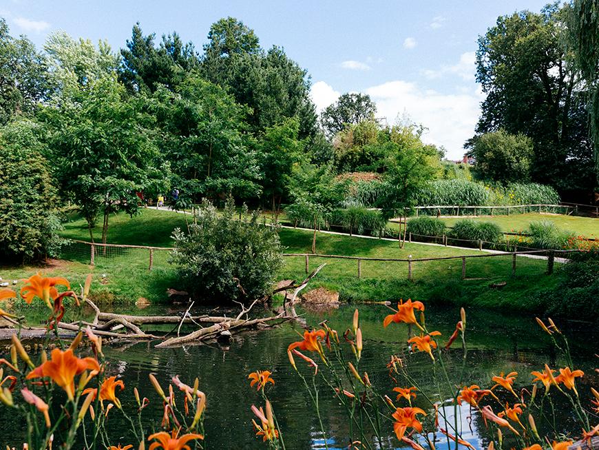 Zoo de la Flèche - Vallée du Loir